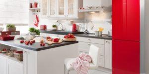 Неисправности двухкамерного холодильника Bosch No Frost