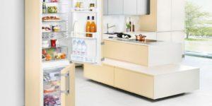 Почему после разморозки холодильник не охлаждает а морозилка работает