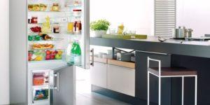 Как правильно и через сколько времени включать холодильник после разморозки