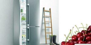 Почему пищит холодильник при закрытой двери после разморозки: что делать с Bosch, Atlant, LG, Liebherr, Бирюса, Electrolux
