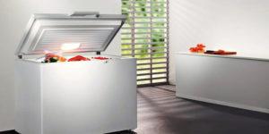 Какой фирмы морозильный ларь лучше выбрать для дома: рейтинг по качеству, характеристикам, цене