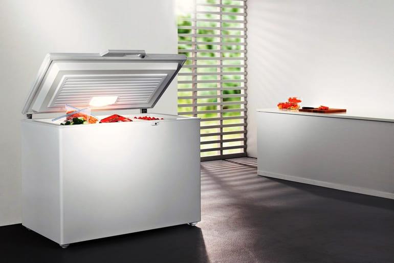 Как и какой фирмы лучше выбрать морозильный ларь для дома